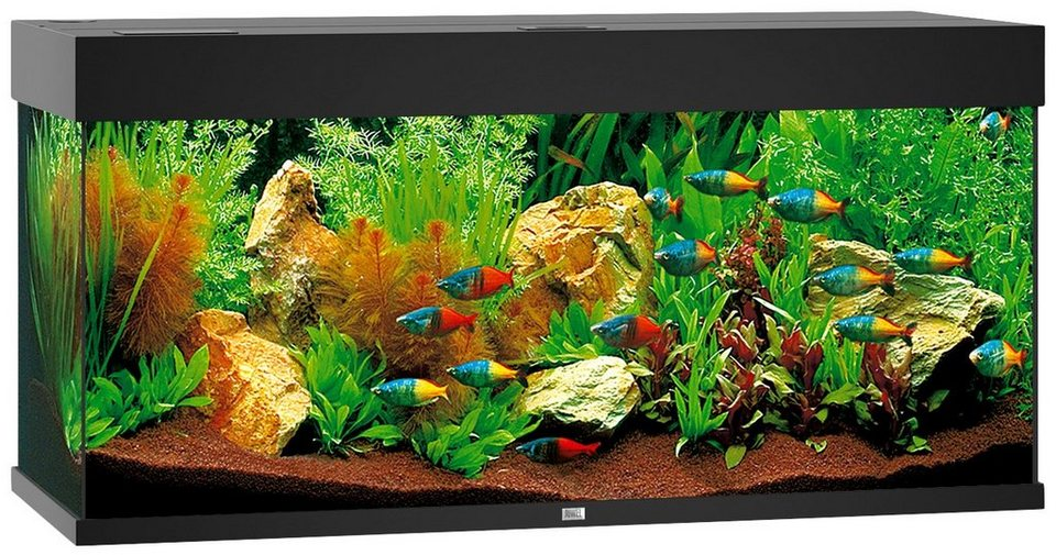 juwel aquarien aquarium rio 180 led b t h 101 41 50 cm 180 l in 4 farben online kaufen otto. Black Bedroom Furniture Sets. Home Design Ideas