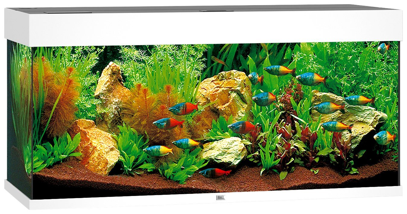 Aquarium »Rio 180 LED«, B/T/H: 101/41/50 cm, 180 l, in 4 Farben