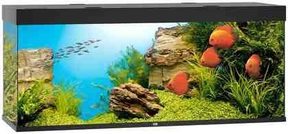 JUWEL AQUARIEN Aquarium »Rio 450 LED«, B/T/H: 151/51/66 cm , 450 l, in 4 Farben