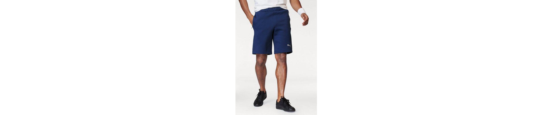 PUMA Shorts EVOSTRIPE ULTIMATE SHORTS Billig Verkauf 2018 Neue #NAME? Speichern Günstig Online Kostengünstige Online CABQx