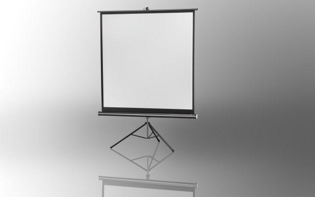 Celexon Leinwände »Stativleinwand Economy 184 x 184 cm«