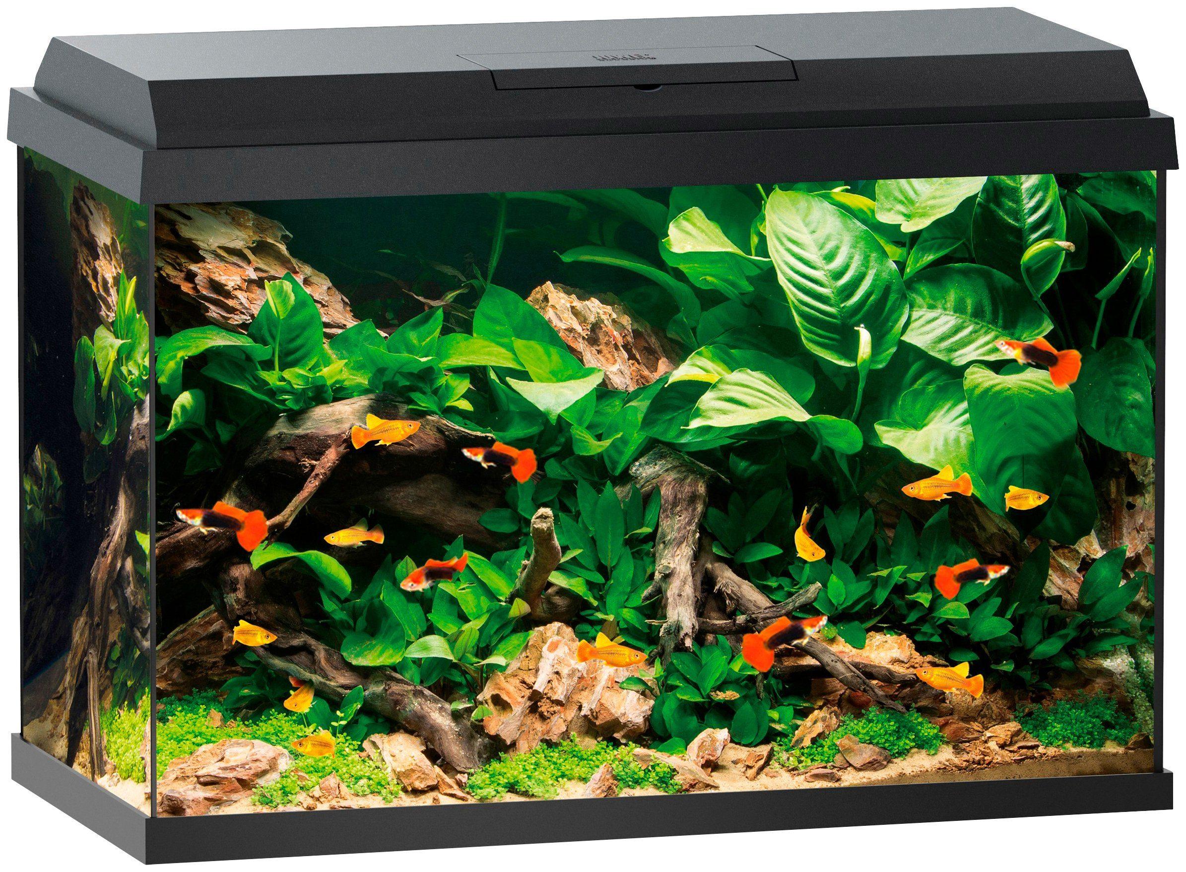 Aquarium »Primo 70«