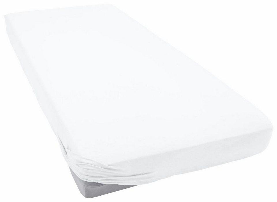 spannbettlaken teddy flausch primera mit rundumgummizug online kaufen otto. Black Bedroom Furniture Sets. Home Design Ideas