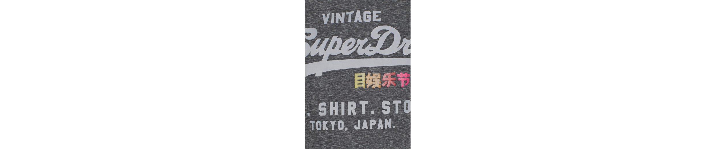 Superdry Rundhalsshirt RAINBOW POP SHIRT ENTRY TEE, mit Logo-Print