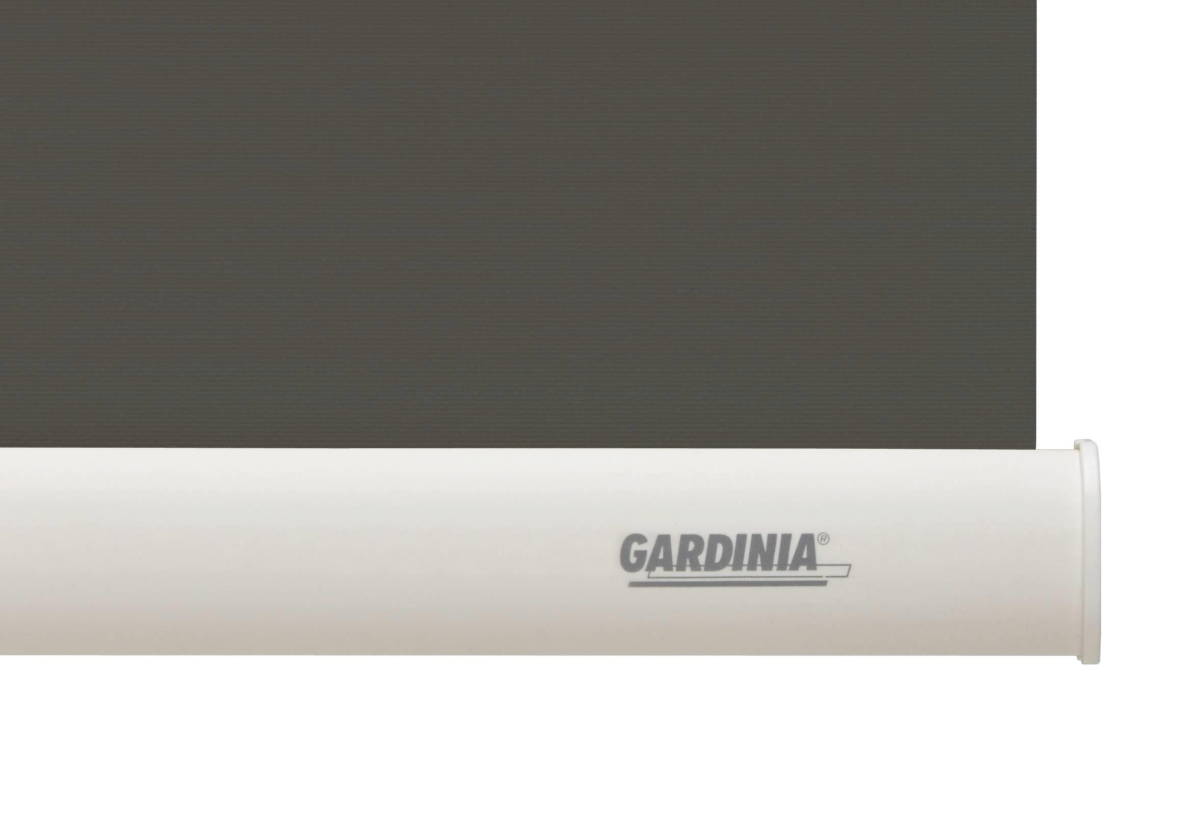 Seitenzugrollo Seitenzugrollo Lichtdurchlässig, GARDINIA, Lichtschutz, 1 Stück, im Fixmaß online kaufen