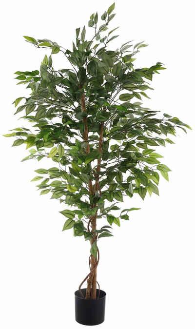 Kunstpflanze »Ficus Benjamini« Ficus Benjamini, Creativ green, Höhe 120 cm