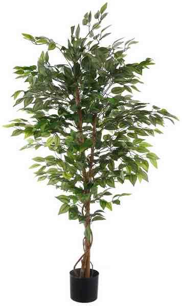 Home affaire Kunstpflanze »Ficus Benjamini« in 2 Größen