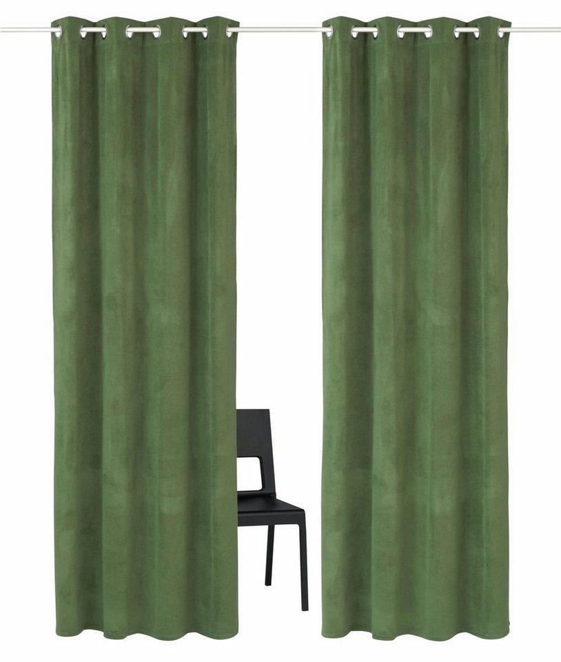 vorhang brighton home affaire collection sen 2 st ck online kaufen otto. Black Bedroom Furniture Sets. Home Design Ideas