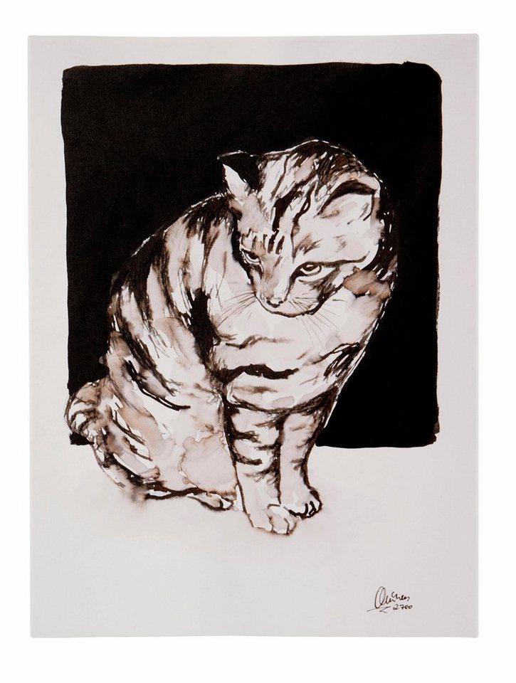 guido maria kretschmer home living leinwandbild katze katzen von frank mutters gerahmt. Black Bedroom Furniture Sets. Home Design Ideas