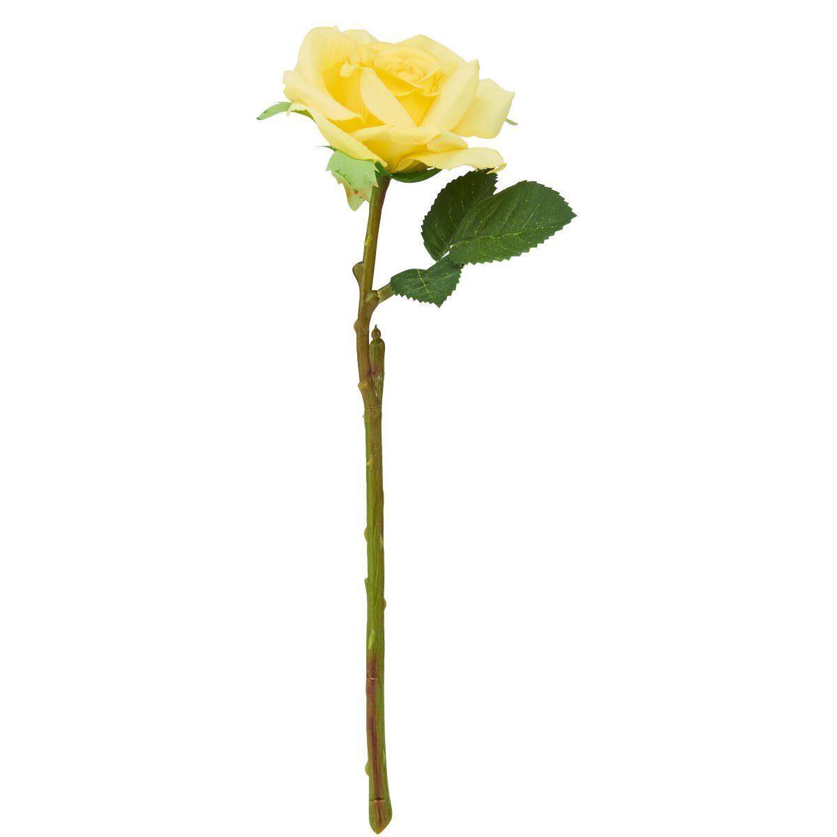 BUTLERS FLORISTA »Rose klein«