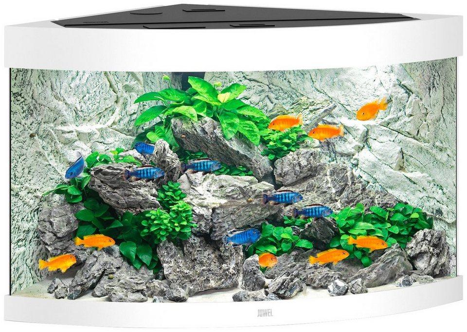 juwel aquarien aquarium trigon 190 bxtxh 98 5x70x60 cm 190 liter online kaufen otto. Black Bedroom Furniture Sets. Home Design Ideas