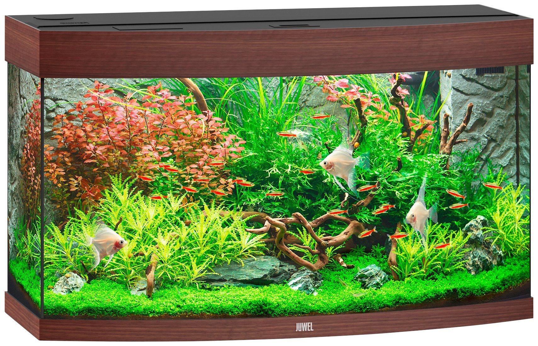 Aquarium »Vision 180 LED«, BxTxH: 92x41x55 cm, 180 Liter