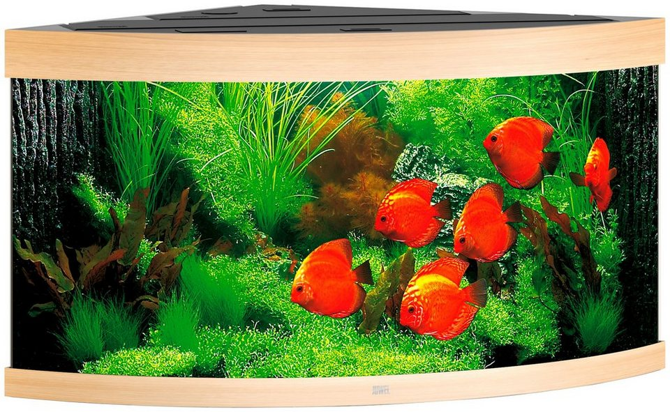 juwel aquarien aquarium trigon 350 bxtxh 123x87x65 cm 350 liter online kaufen otto. Black Bedroom Furniture Sets. Home Design Ideas