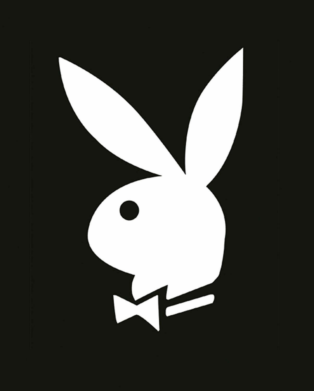 Deco Panel, »Playboy Bunny«, 40/50 cm
