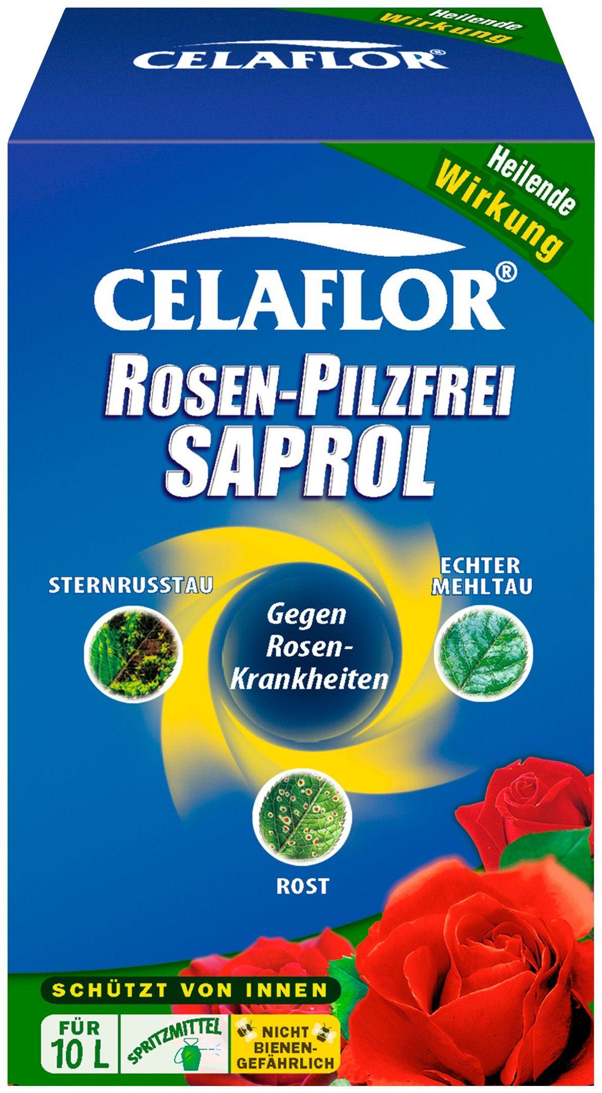 Rosen-Pilzfrei Saprol