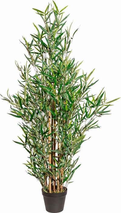 Kunstpflanze Bambus, Creativ green, Höhe 120 cm