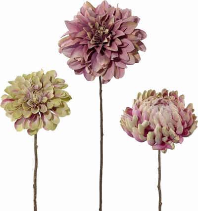 Deko Blumen kunstblumen kaufen künstliche deko blumen otto