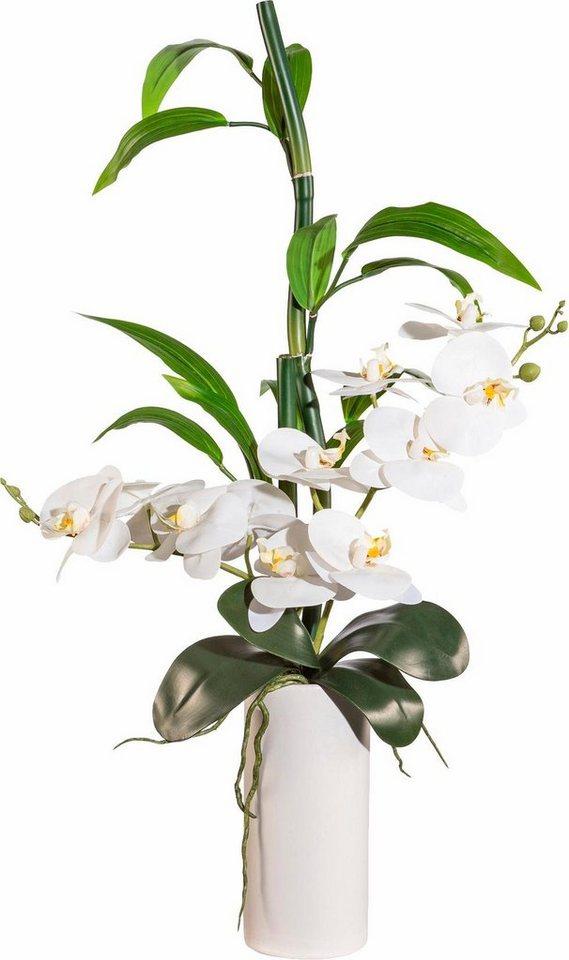 deko orchidee und bambus online kaufen otto. Black Bedroom Furniture Sets. Home Design Ideas