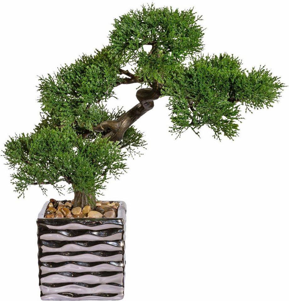 deko bonsai zeder im keramiktopf online kaufen otto. Black Bedroom Furniture Sets. Home Design Ideas
