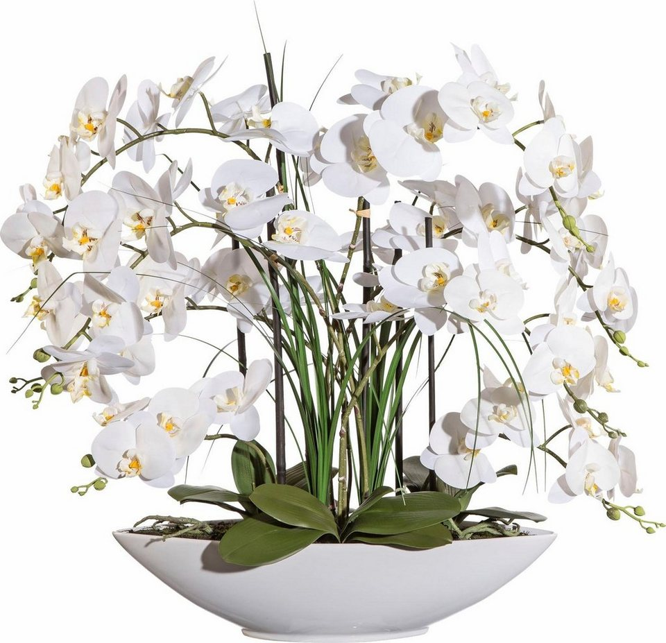 Deko orchidee ca 70 cm hoch online kaufen otto - Orchideen deko ...