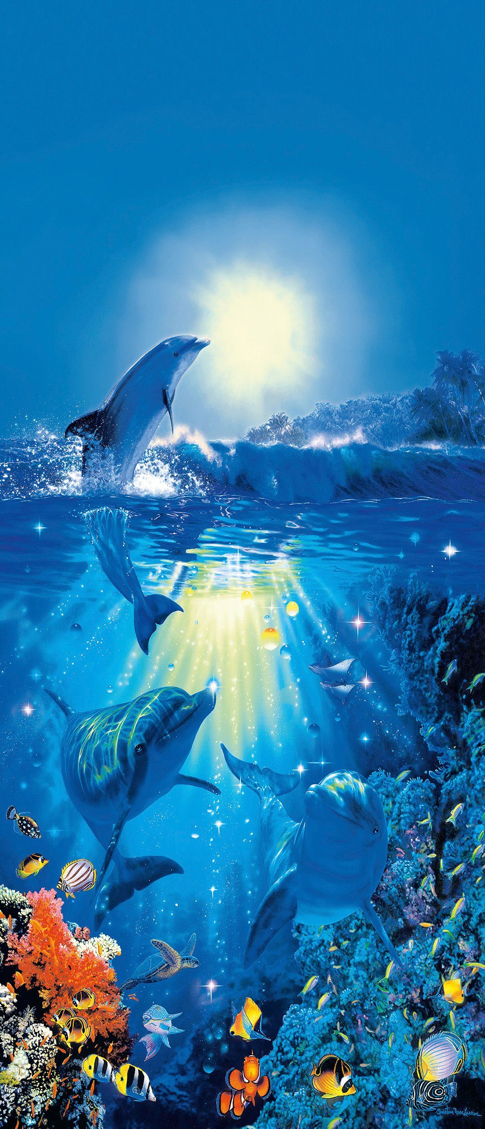 IDEALDECOR Türtapeten »Dolphin in the Sun«, 2-teilig, 86x200cm