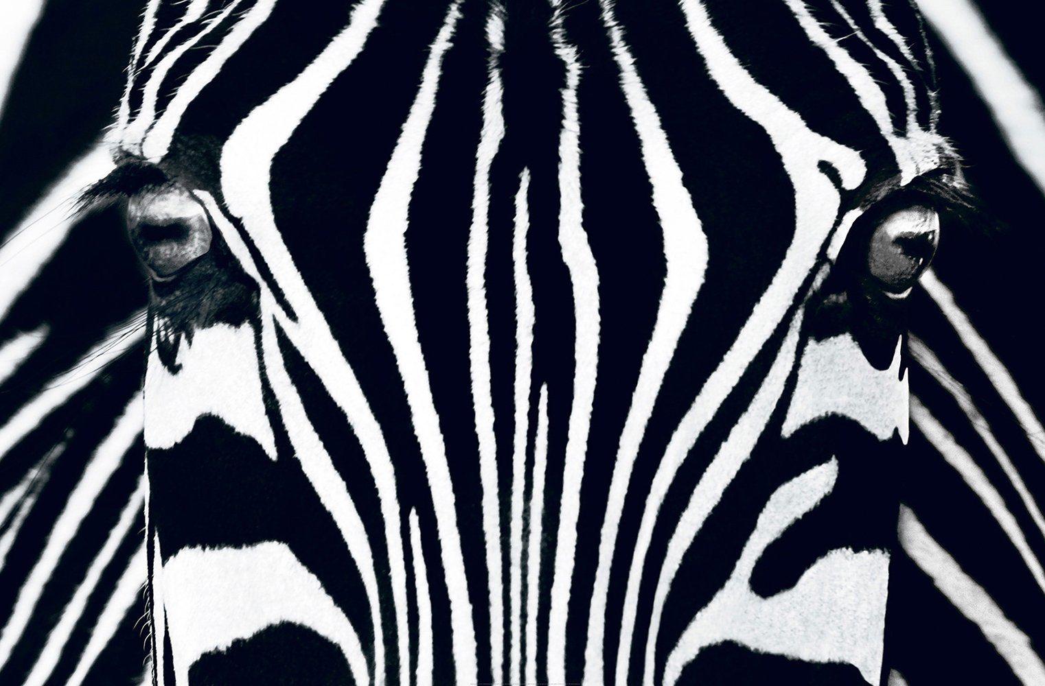 IDEALDECOR XXL Poster »Giant Art - Black & White«