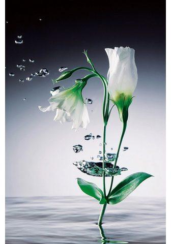 IDEALDECOR XXL Plakatas »Giant Art - Crystal Flow...