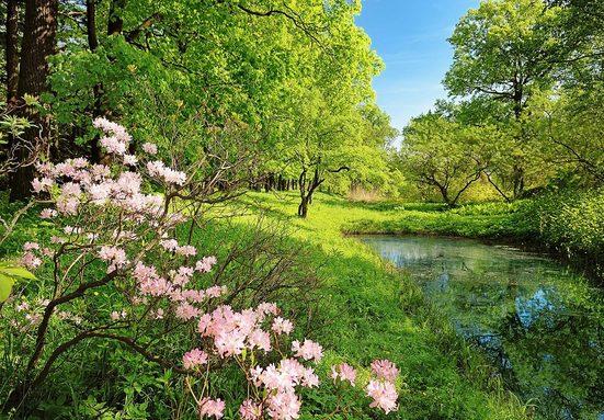 Fototapete »Park in the Spring«, 8-teilig, 366x254 cm