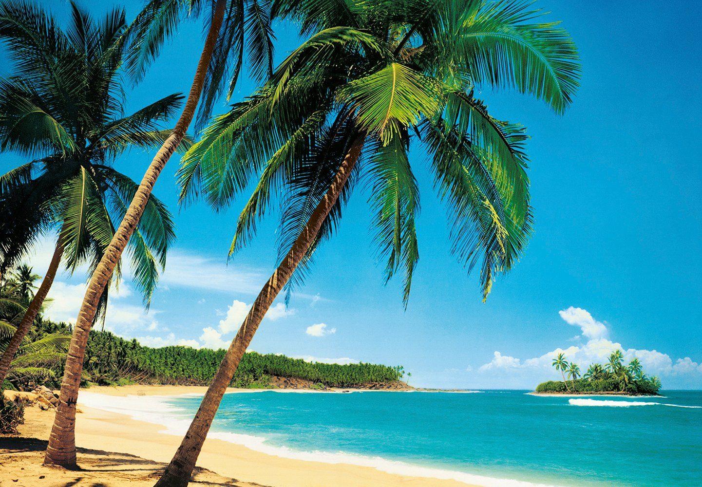 Fototapete »Ile Tropicale«, 8-teilig, 366x254 cm