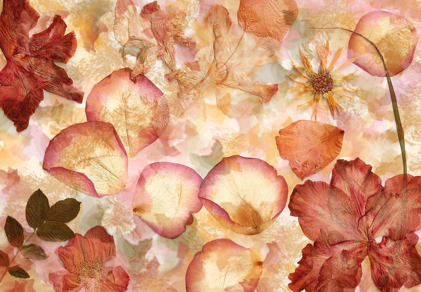Vliestapete »Dried Flowers«, 366x254cm, 8-teilig