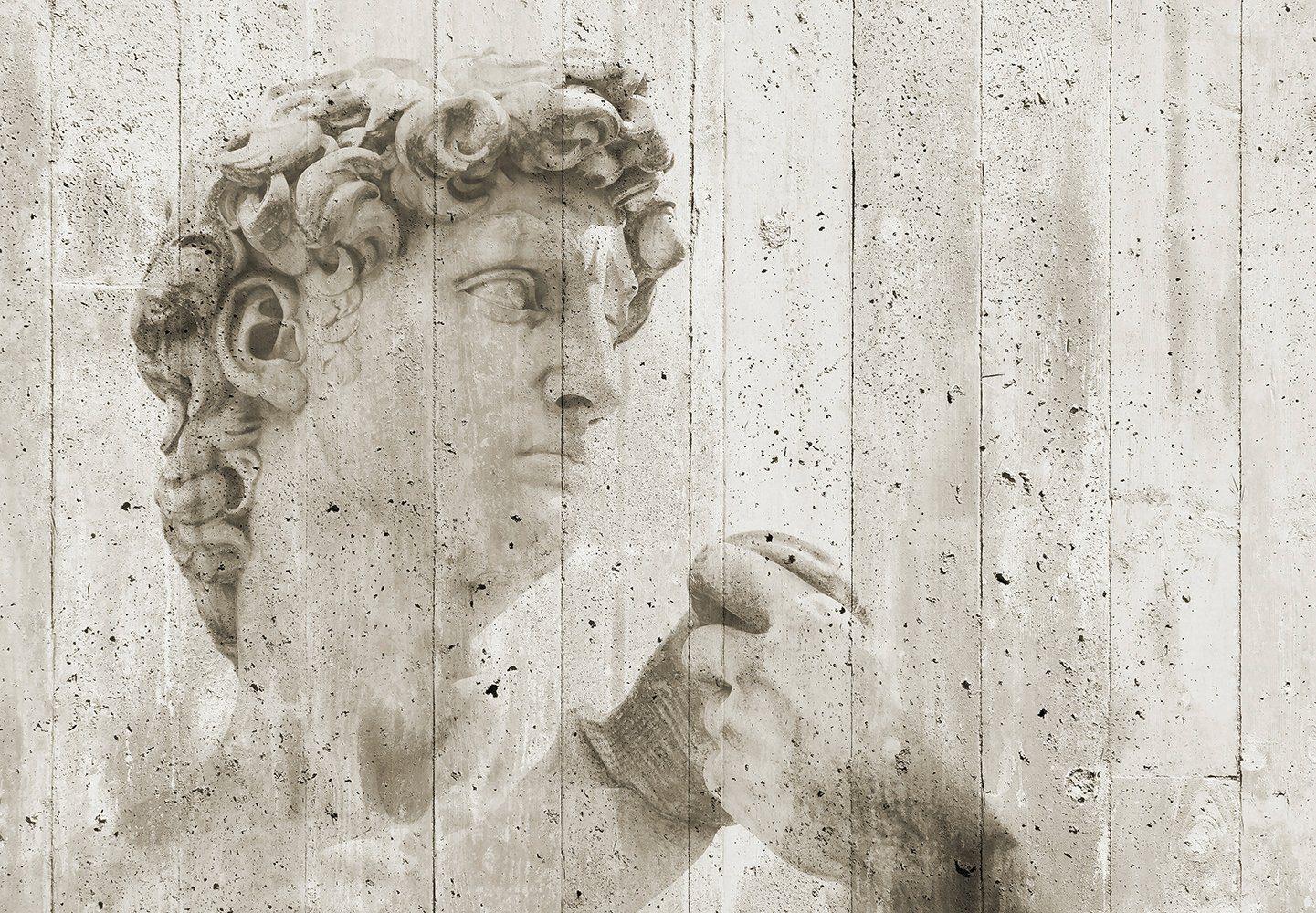 Vliestapete »David Street Art«, 366x254cm, 8-teilig