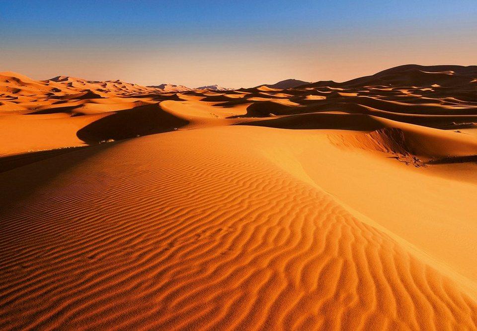 Vliestapete Desert Landscape 366x254cm 8 Teilig Online Kaufen Otto