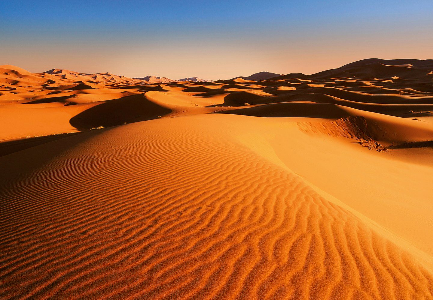 Vliestapete »Desert Landscape«, 366x254cm, 8-teilig