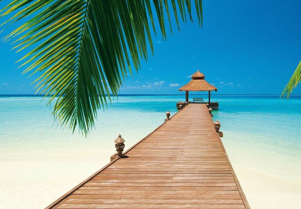 fototapete paradise beach 8 teilig 366x254 cm otto. Black Bedroom Furniture Sets. Home Design Ideas