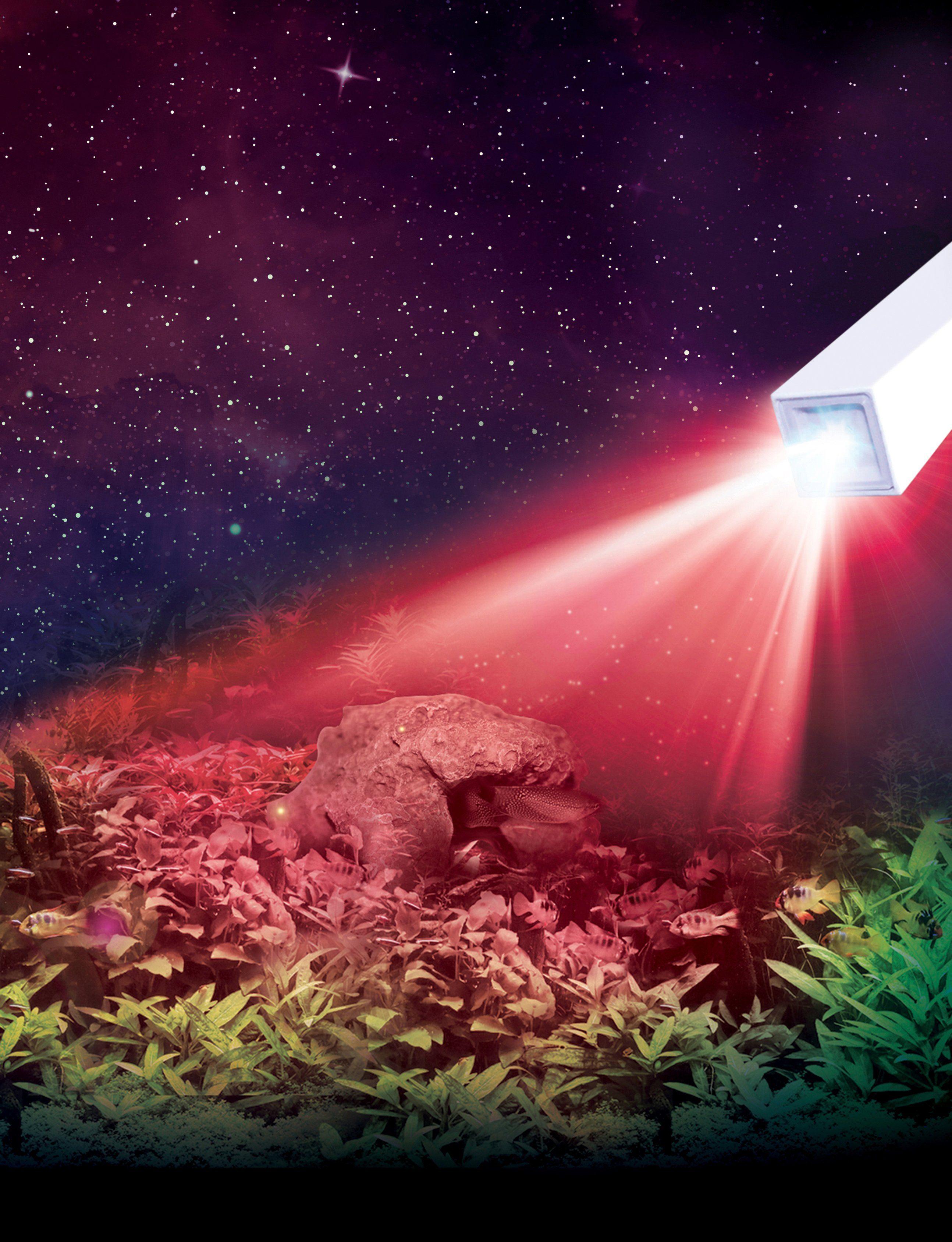 Fluval LED-Aquarien-Beleuchtung »PRISM Keramik LED Spot«