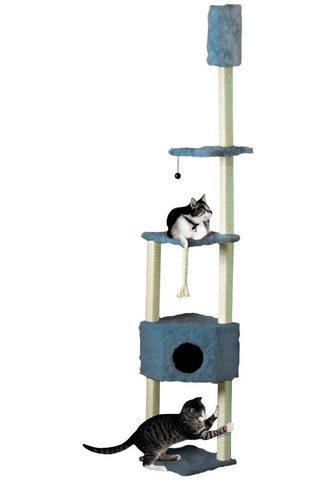 CAT DREAM Kačių stovas su draskyklė B/T/H: 38/38...