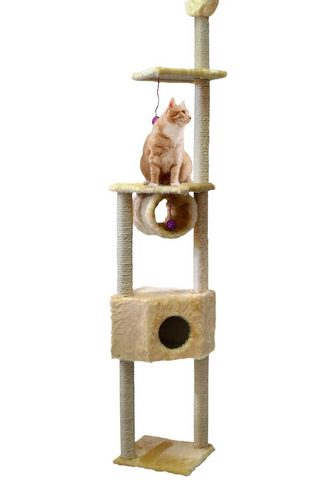 CAT DREAM Kačių stovas su draskyklė »Duo« B/T/H:...
