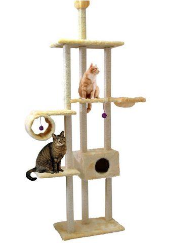 CAT DREAM Kačių stovas su draskyklė »Family« B/T...