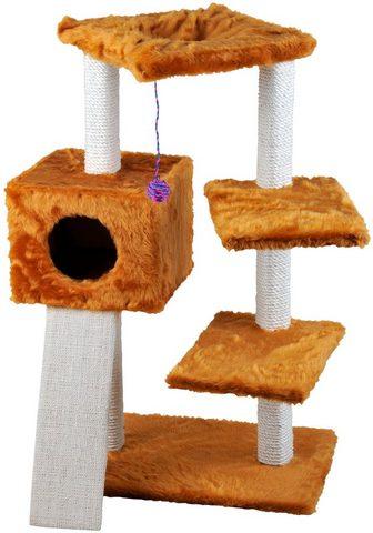 CAT DREAM Draskyklė »Felix« B/T/H: 82/36/98 cm h...