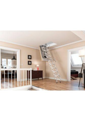DOLLE Palėpės laiptai »elektro-top« dėl Deck...