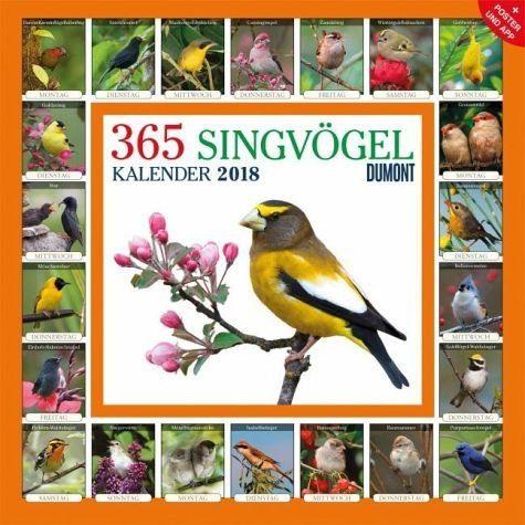 Kalender »365 Singvögel 2018«