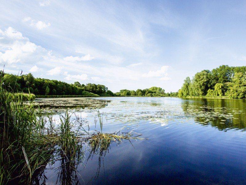 Artland Poster, Leinwandbild »Idylle Landschaften Gewässer Foto« | Dekoration > Bilder und Rahmen > Poster | Kiefernholz | Artland