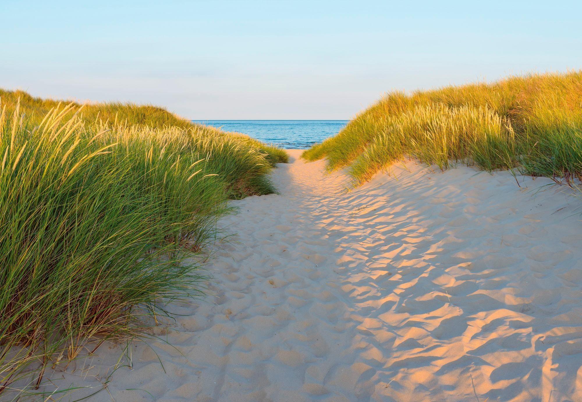 Komar Fototapete »Sandy Path« 368/254 cm