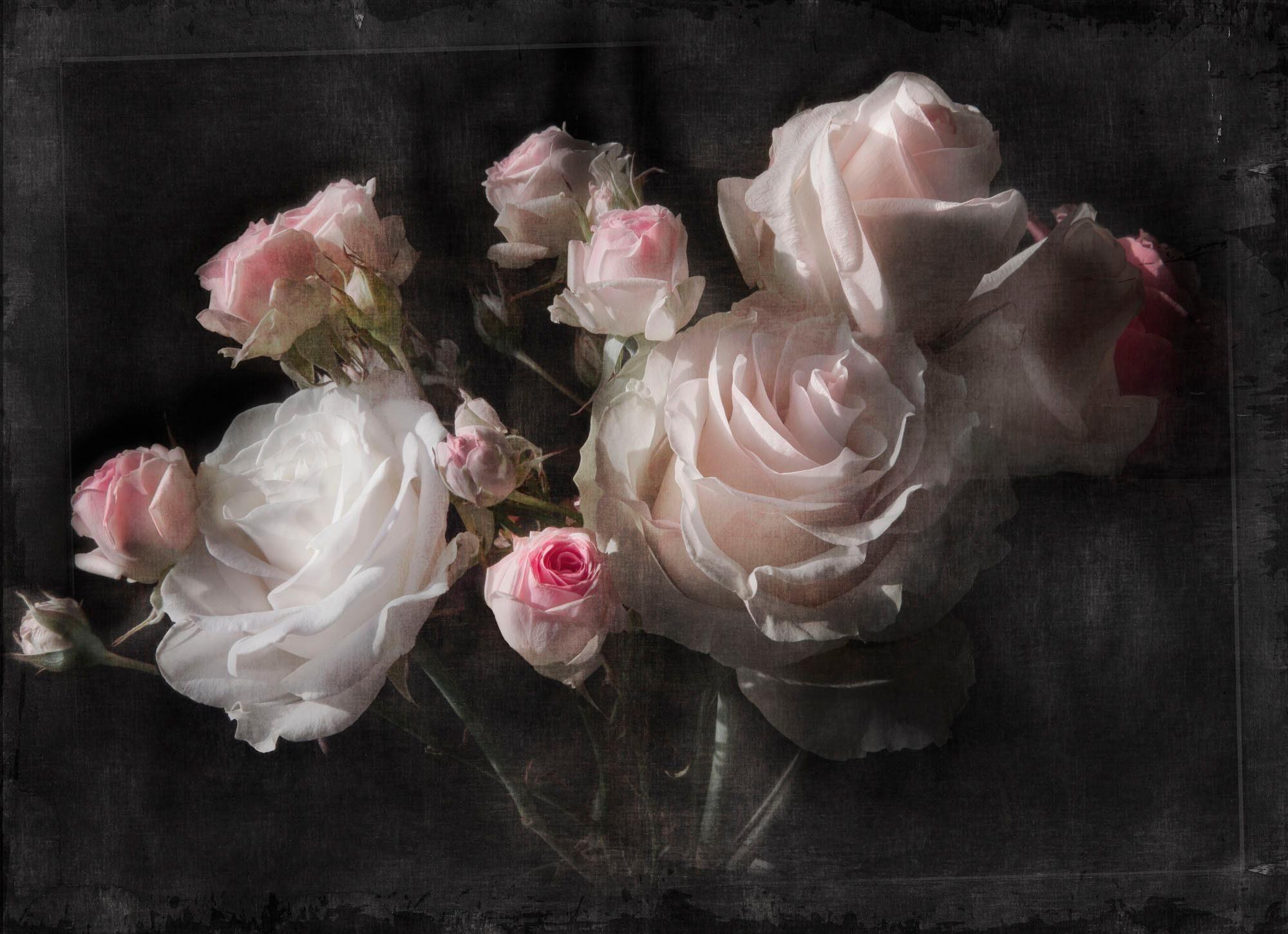 Komar Fototapete »Eternity« 254/184 cm