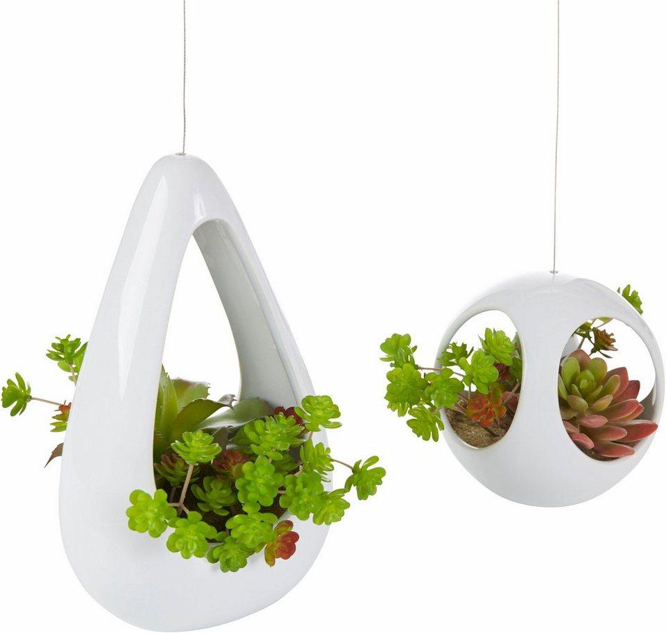 kunstpflanze sukkulenten set online kaufen otto. Black Bedroom Furniture Sets. Home Design Ideas
