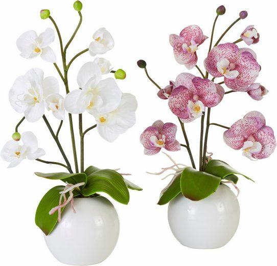 Home affaire Kunstpflanze »Orchidee« (Set, 2 Stück)