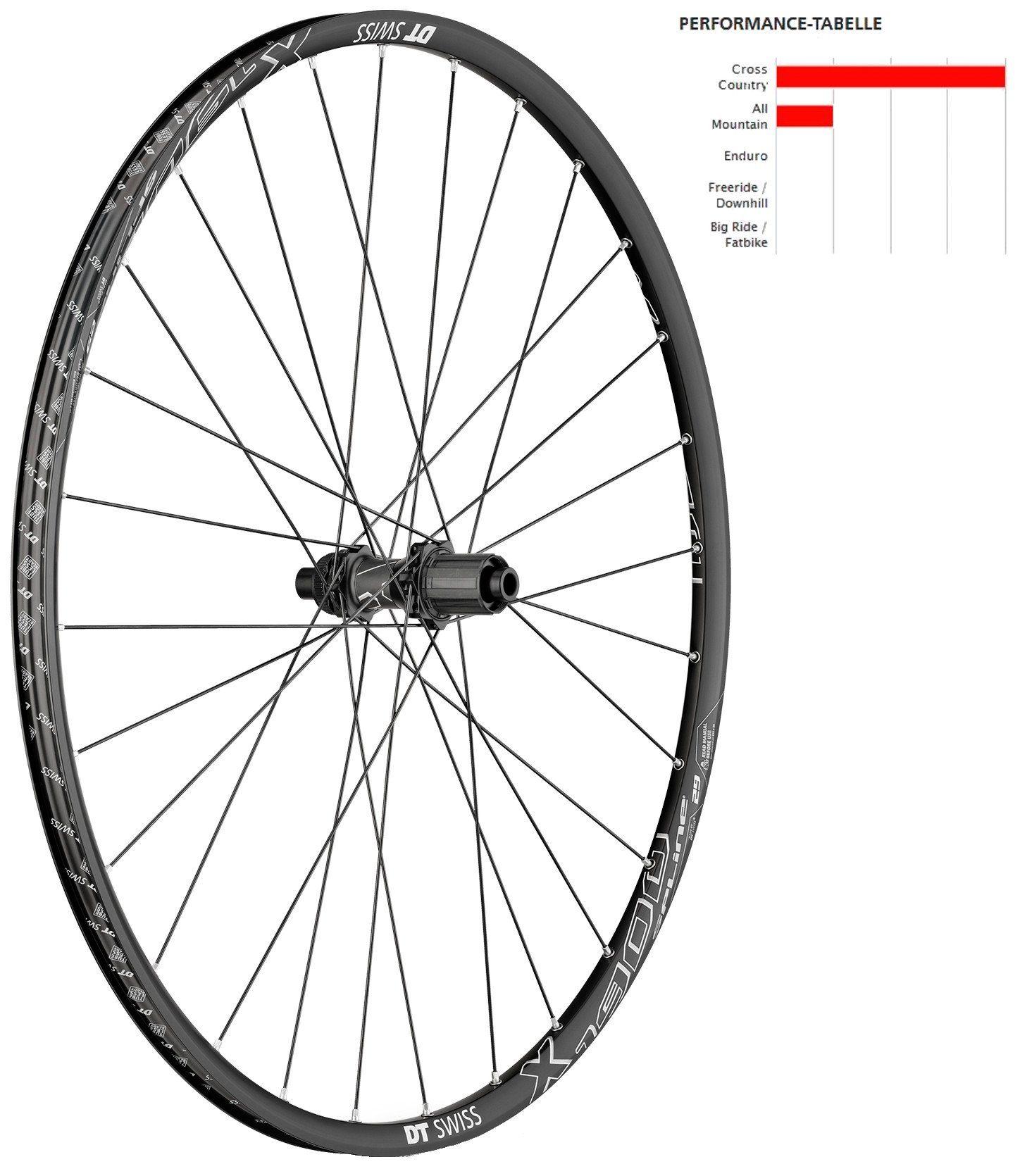 """DT Swiss Laufrad »X 1900 Spline Hinterrad 29"""" TA Boost«"""