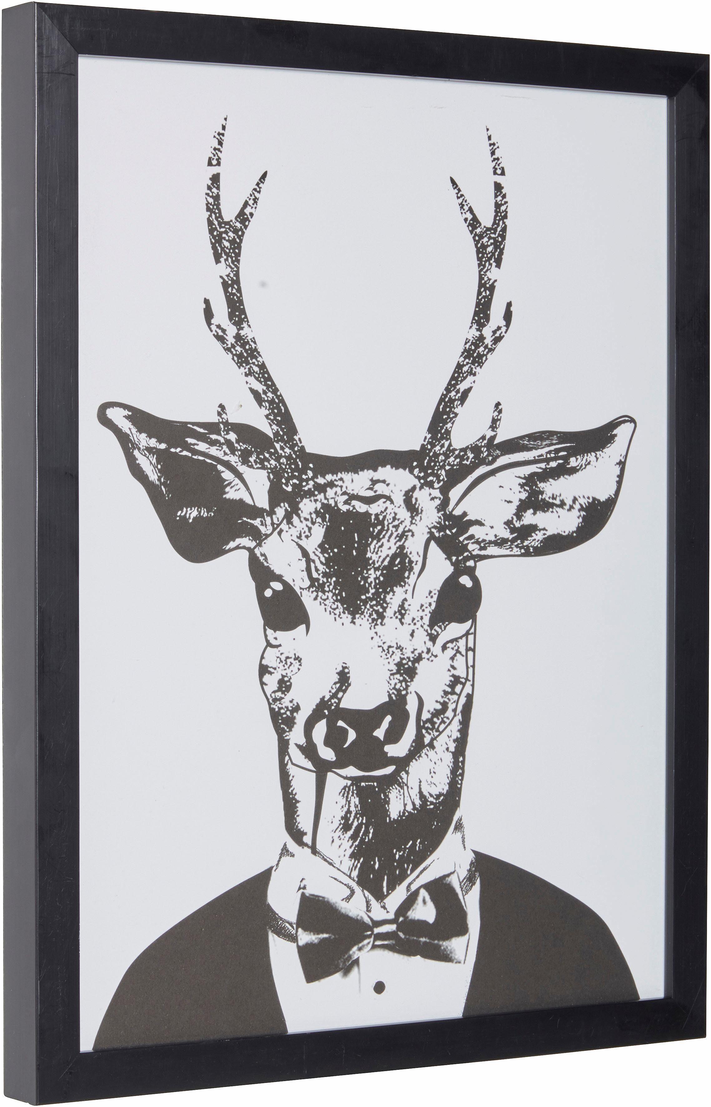 Home affaire gerahmter Kunstdruck »Reh im eleganten Anzug«, 33/43 cm