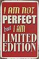 Home affaire Metallschild »I am not perfect …«, Maße (B/H): ca. 30/45 cm, Bild 2