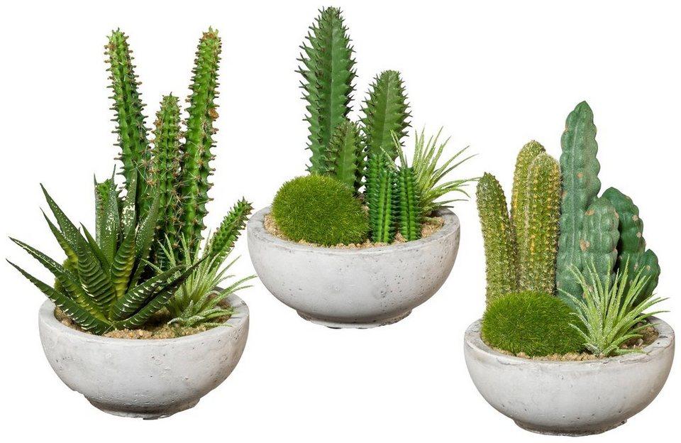 kunstpflanze kakteen arrangement 3 stk im zementtopf h he 16 cm online kaufen otto. Black Bedroom Furniture Sets. Home Design Ideas